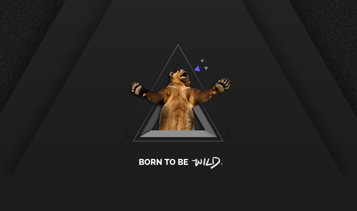 wild_01
