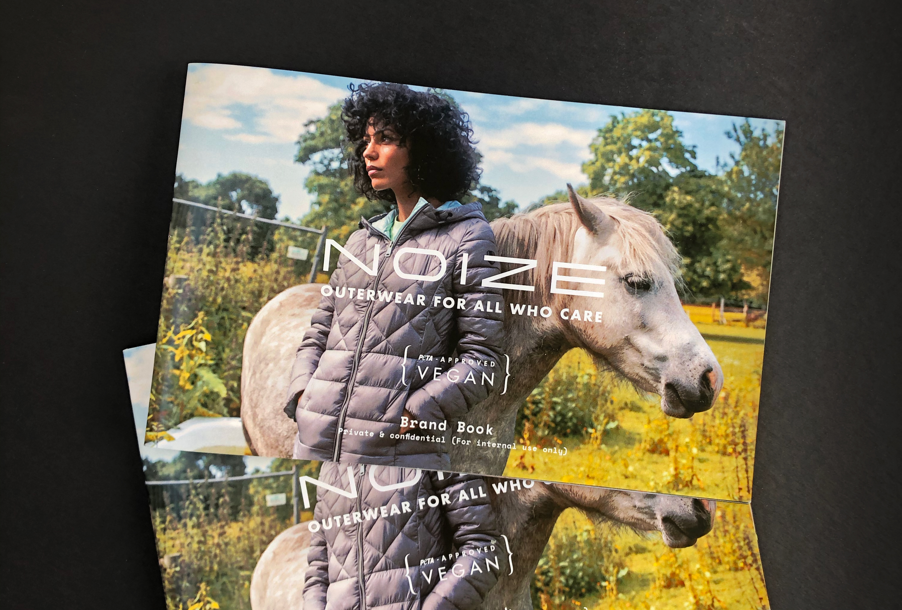 noize_brand_book_cover